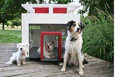 My Best Friend's Home: Cubix approx $2620.69