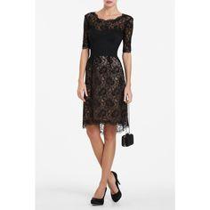 BCBG LILA LACE BUSTIER COCKTAIL DRESS  $358.00