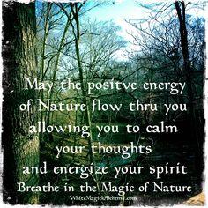Breathe in the quiet magic of nature