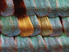 Butterfly wing up close: www.photomacrography.net :: View topic - Butterfly scales (images added +)