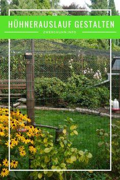 Auslauf / Gehege für Hühner richtig gestalten Infos zu Größe, Umzäunung, Bepflanzung, Bodenfläche, Überdachung, Übernetzung mit Vogelschutznetz #Hühner #Zwerghühner #chicken