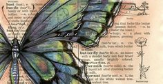 "Blue Green Butterfly   6"" x 9"" Mixed Media Drawing on Distressed, Dictionary Page   I really enjoy drawing butterflies and expect to see ..."