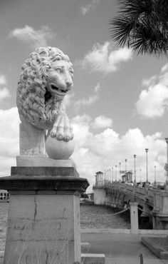 They are beautiful one is on each side of the bridge before you cross it. Bridge of Lions in St. Augustine FL