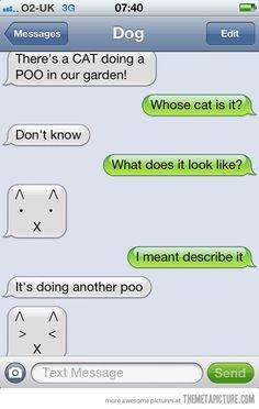 dog text message