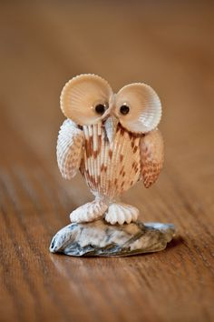 This wise little owl made from Sanibel Island shells will entertain your guests as a place setting or table centerpiece. For more info or to contact us for quantity pricing, go here: http://www.lowtidetreasure.com/wise-owl/ $14.99