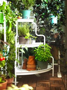 It's time to bring out that green thumb! Use the SOCKER IKEA plant stand to create an elegant presentation of flowers, plants or fresh herbs. Porch Garden, Balcony Garden, Garden Web, Hacks Ikea, Corner Plant, Potager Bio, Garden Power Tools, Diy Plant Stand, Plant Stands
