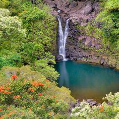 John Muir, the famed conservationist, once quipped that waterfalls and the nature surrounding them form a piece of the heart of the world. When visiting waterfalls here in Maui—whether gazing upon them from a safe distance or swimming in a pool at their base—it's easy to understand the love affair espoused by people like Muir.