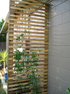 Set your garden apart from the rest of your yard by setting it up with a trellis.  Styles and inspirations for these outdoor structures are endless. Here are some ideas for using wood, traditional designs, and coloring far outside the lines with completely unconventional ideas.