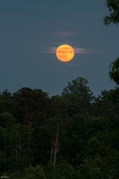The moon is amazing!