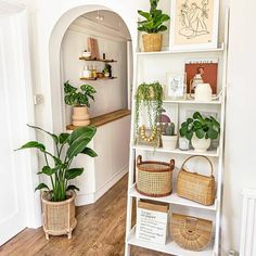 I just discovered one of the most simply lovely boho-inspired feeds by @homewithkelsey ! • • • • • • I just love the texture and simplicity of her room designs. And the plants!!! This feed is giving me serious plant goals in the new house. She has lots of plant tips and info to check out:  🌱 Plants & pots linked at plants.homewithkelsey.com Living Room Shelves, Home Living Room, Living Room Designs, Living Room Decor, Room Ideas Bedroom, Bedroom Decor, Ladder Shelf Decor, Boho Room, Aesthetic Room Decor