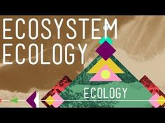 Crash Course Video.  Hank brings us to the next level of ecological study with ecosystem ecology, which looks at how energy, nutrients, and materials are getting shuffled around within an ecosystem (a collection of living and nonliving things interacting in a specific place), and which basically comes down to who is eating who.