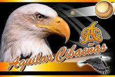 Aguilas Cibaeñas darán apertura de sus entrenamientos