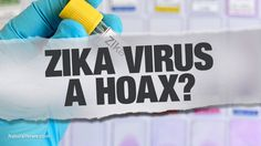 Zika HOAX exposed by South American doctors: Brain deformations caused by larvicide chemical linked to Monsanto; GM mosquitoes a 'total failure' | Liberty Revolution | Scoop.it