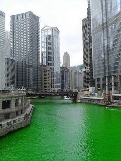 Chi town @ St Patty's Day, Chicago http://folakeminuggets.blogspot.com/p/booking.html