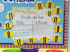 Life in First Grade: Honey Bees Craft and Compare and Contrast