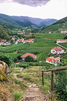 undefined Vineyard, Wanderlust, Mountains, Nature, Outdoor, Stone Fence, Trench, Hiking, World