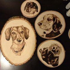 Woodburned Pet Portraits - Dogs, Cats, Birds, Horses, etc.