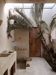 bathroom with palm trees