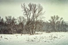 In blizzard I stand by Dariusz Łakomy
