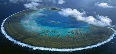 lady musgrave island | Lady Musgrave Island