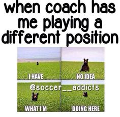 Softball too. I can relate to almost every soccer post ever and I play softball. Funny Soccer Memes, Volleyball Quotes, Volleyball Funny, Softball Things, Soccer Humor, Volleyball Training, Softball Players, Funny Minion, Lol Pics