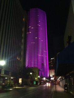 Miami South Beach: Downtown Miami,    >> Explores our deals!