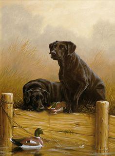 Labrador Retriever painting by John Silver