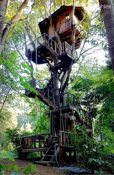 Tresshouses are fun to live. #Treehouses #peace #fun