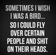 Sometimes I wish I was a bird...