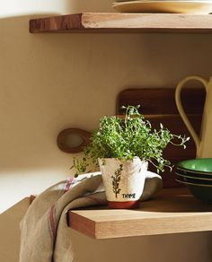 Nouvelle Collection Zara, Zara Home Canada, Shelf Arrangement, Zara Home España, Decorative Accessories, Flower Pots, Floating Shelves, Improve Yourself, Ideas