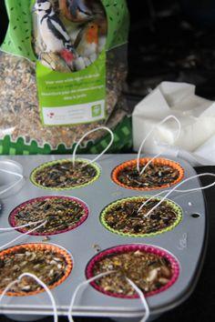 Home made vetbollen – One Life Live It Homemade Bird Feeders, Diy Bird Feeder, Craft Projects For Kids, Diy For Kids, Garden Animals, Outdoor Garden Decor, Winter Cabin, Backyard Lighting, Bird Food