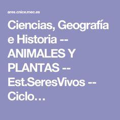 Ciencias, Geografía e Historia -- ANIMALES Y PLANTAS -- Est.SeresVivos -- Ciclo…