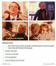 I am totally in love with the idea of Robin Williams as an older Harry and I never even thought about it. Harry Potter Jokes, Harry Potter Universal, Harry Potter Fandom, Harry Potter World, No Muggles, Fiction, Mischief Managed, Angst, Fantastic Beasts
