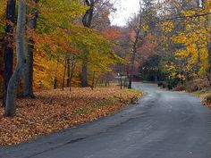 Llewellyn Park - Wikipedia