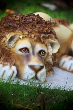 Dreamy Lion cake  This pinterest board has thousands of cake photos/ideas/inspiration. And a lot of them are quite unusual!  http://pinterest.com/ashbaygrammy/cakes-beautiful-cakes-for-the-occasions/?page=11