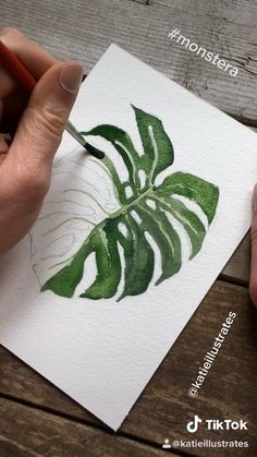 Short timelapse of a watercolor botanical illustration art videos Monstera Watercolor Painting Video Watercolor Painting Techniques, Watercolor Drawing, Watercolor Illustration, Watercolor Background, Easy Watercolor, Abstract Watercolor, Watercolour Tutorials, Painting With Watercolors, Simple Watercolor Paintings