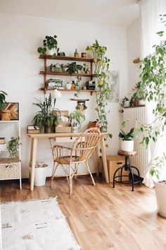 Indoor Plants Ideas To Make More Home Fresh Indoor plants can be used as home decoration is not new. However, the trend of home decoration using plants is growing. Besides being able to add a be. Home Office Design, Home Office Decor, Small Office Decor, Cool Office Space, Interior Design Minimalist, Aesthetic Room Decor, Boho Room, Bohemian Bedroom Decor, Home Decor Paintings