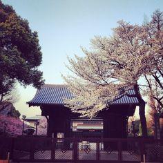 Rinnou-ji, Ueno 寛永寺旧本坊表門