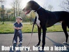 Don't Worry, He's On a Leash.....