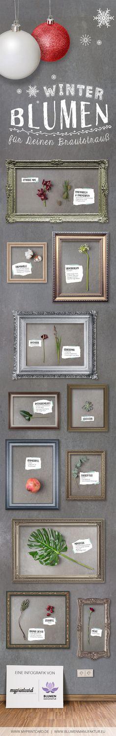 Diese Winterblumen eignen sich jetzt perfekt für deinen Brautstrauß im Winter! #infografik #hochzeitsblumen #modern#winter #winterhochzeit