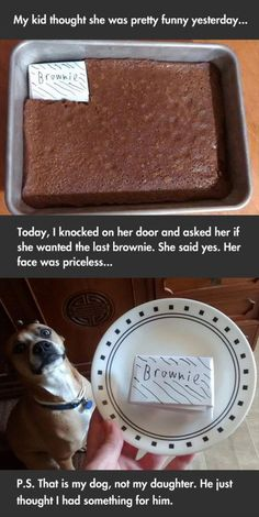 Dump A Day Funny Pictures Of The Day - 80 Pics