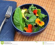Healthy Organic Green Salad With Edible Flowers Stock Photo - Image of choy, blue: 20973584 Clean Recipes, Cooking Recipes, Healthy Recipes, List Of Edible Flowers, Bouquet, Grow Your Own Food, May Flowers, Food Hacks, Food Tips
