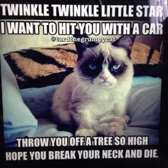 Lol grumpy cat sings twinkle twinkle little star in his version. I think it should be called Death Star don't you think