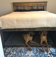 California King wooden bed with dog den underneath. I hope the hubs will be dogs PickPin - California King wooden bed with dog den underneath. I hope the hubs become dogs - House, Home Projects, Diy Furniture, Home, Home Bedroom, Wooden Bed, Bed, Home Diy, Remodel Bedroom