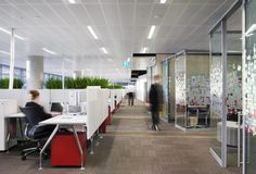 Fujitsu Head Office in Docklands, Melbourne | Planter boxes with greenery.