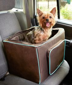 Travel safely with your pet with the #MarthaStewartPets Booster Seat for dogs. #NationalPetFirstAidAwarenessMonth #petsafety #pettips #PetSmart.