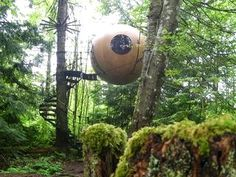 """The """"Spherical Tree House"""" concept borrows heavily from sailboat construction and rigging practice. It's a marriage of tree house and sailboat technology. Wooden spheres are built much like a cedar strip canoe or kayak. Suspension points are similar to the chain plate attachments on a sailboat. Stairways hang from a tree much like a sailboat shroud hangs from the mast."""