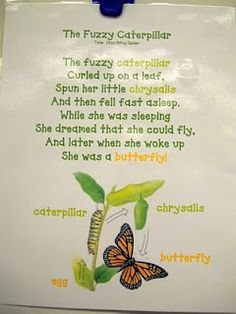 Caterpillar Poem for Pre -K.    Pierce (n.d.). Discoveries of a Teacher. Retrieved from http://discoveriesofateacher.blogspot.com/search?updated-max=2010-09-06T19:47:00-05:00&max-results=7                                                                                                                                                                                 More