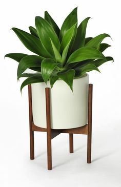 Modernica Small White Pot with Stand