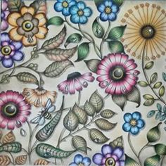 Craft Art Bee Large Flowers Johanna Basford Colouring Coloring Book Chance Livros Background Craftsman Artwork